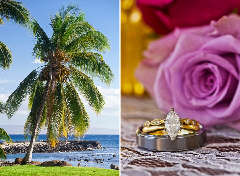 Destination-Wedding-Photographers-Hawaii-Maui-Olowalu-012