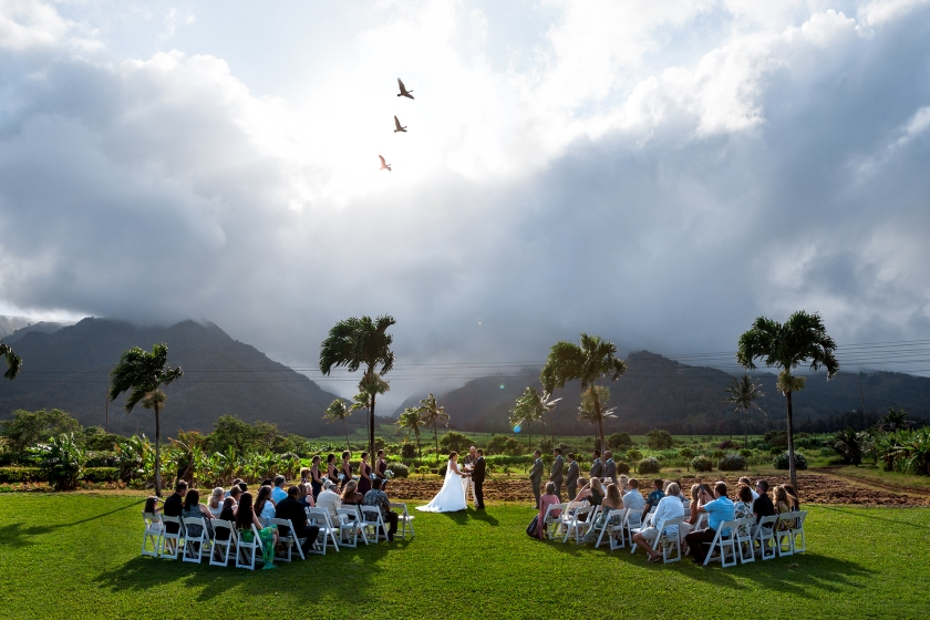 Emily & Gershom's Hawai'i summer wedding at the Maui Tropical Plantation House. Photography by Matthew Nall & Madelynne Nehl of Maui Creative Photography.