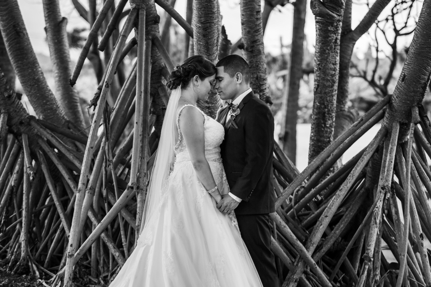 Maui-Tropical-Plantation-Wedding-012